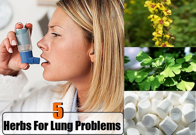 lungs problems