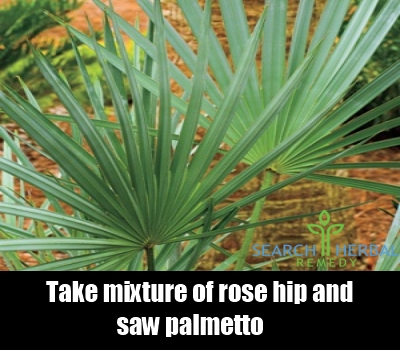 rosehip and saw palmetto