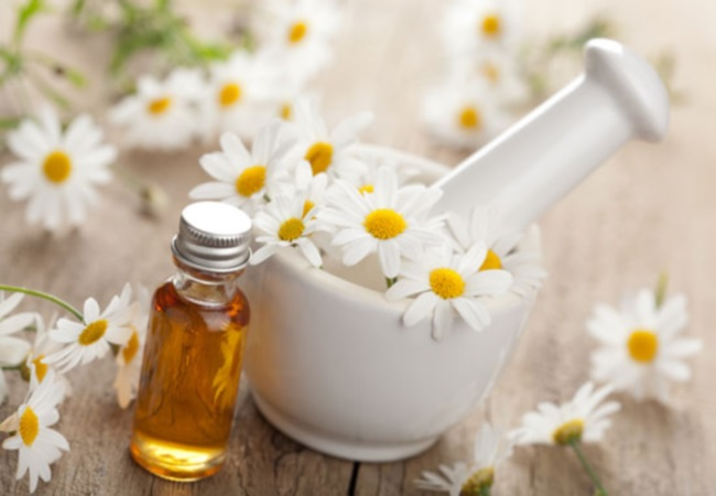 Chamomile Oil For Camping First Aid