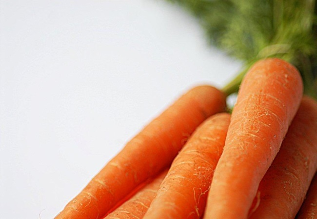 Chewing Crunchy Carrots