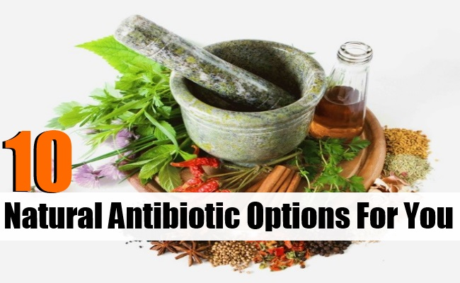 Natural Antibiotic Options For You