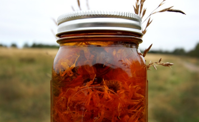 Applying Calendula Or Marigold Infused Water