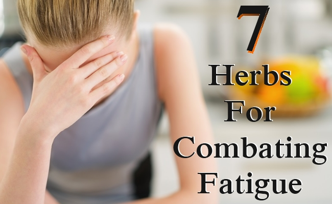 Herbs For Combating Fatigue