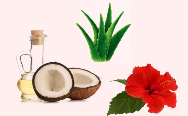 Hibiscus Flower, Aloevera And Coconut Oil