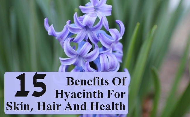 Benefits Of Hyacinth For Skin, Hair And Health