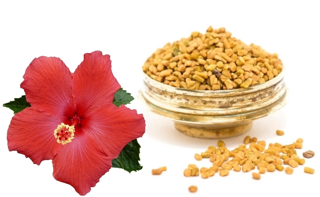 Hibiscus And Fenugreek Seeds Paste