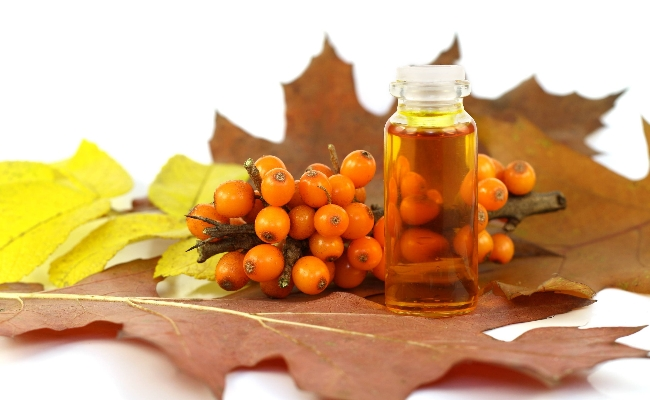 Sea Buckthorn Essential Oil