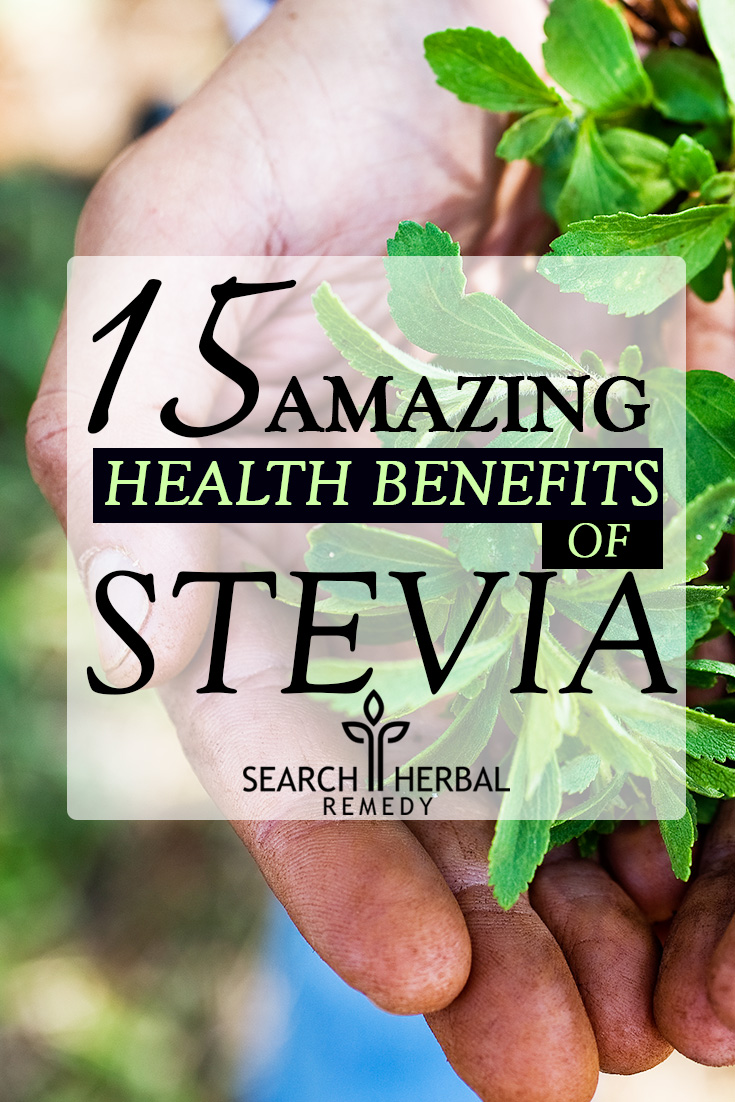 15 Amazing Health Benefits Of Stevia