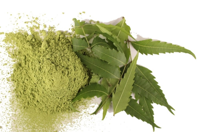 Powder of Neem Leaves
