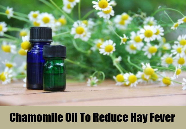 Chamomile Oil To Reduce Hay Fever