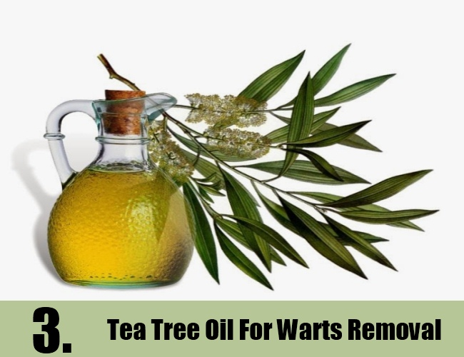 Tea Tree Oil For Warts Removal
