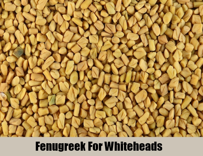 Fenugreek For Whiteheads