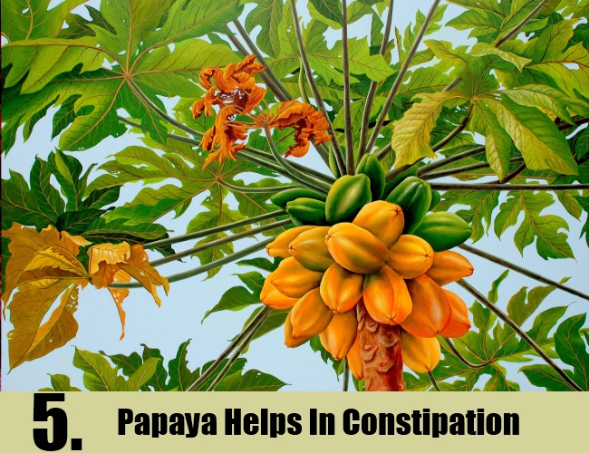 Papaya Helps In Constipation