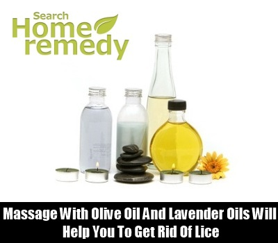 Olive Oil And Lavender Oil