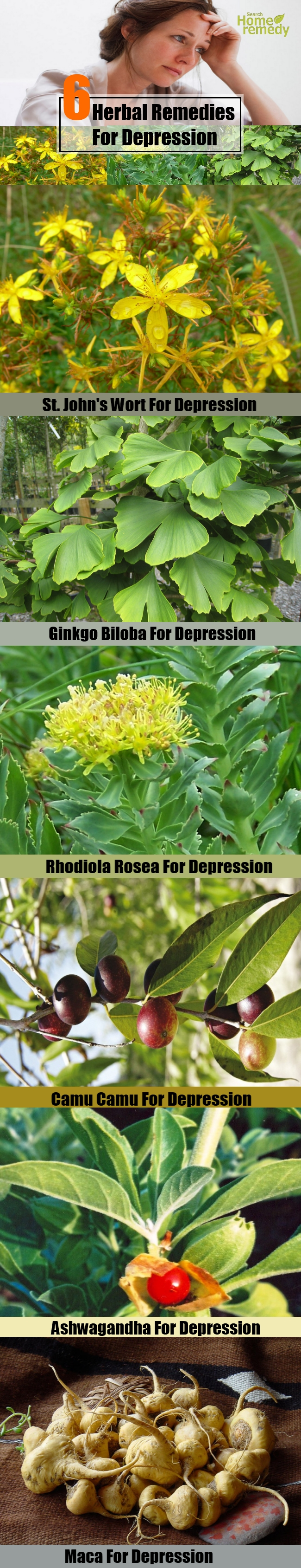 6 Popular Herbal Remedies For Depression