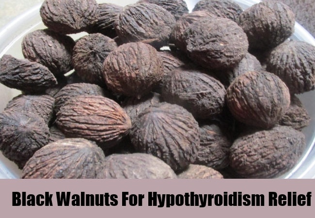 Black Walnuts For Hypothyroidism Relief