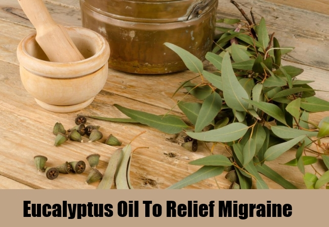 Eucalyptus Oil To Relief Migraine