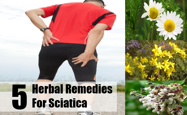 Herbal Remedies for Sciatica
