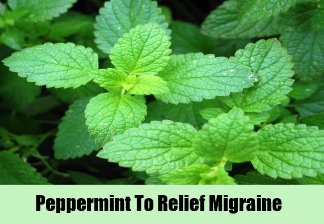 Peppermint To Relief Migraine
