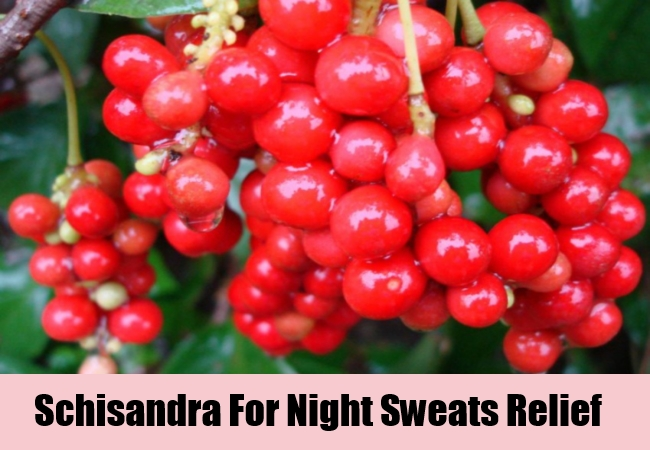 Schisandra For Night Sweats Relief