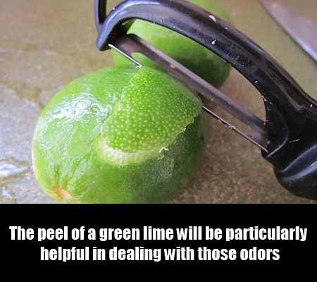 Stay Away From The Odors