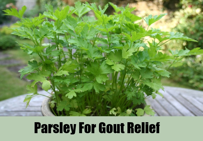 Parsley For Gout Relief