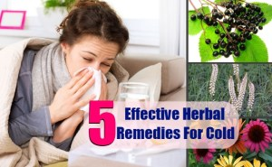 5 Effective Herbal Remedies For Cold
