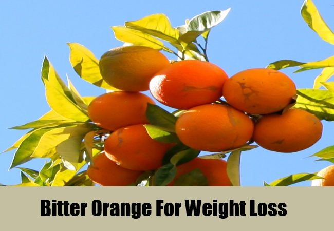 Bitter Orange For Weight Loss