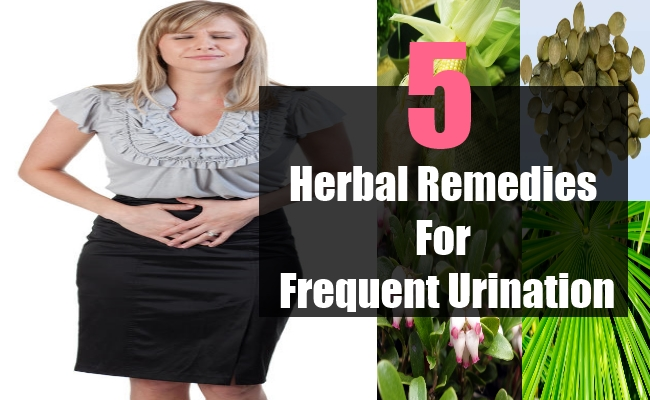 Herbal Remedies For Frequent Urination