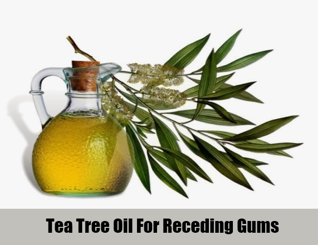 Tea Tree Oil For Receding Gums