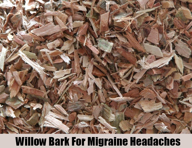 Willow Bark For Migraine Headaches