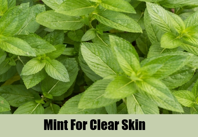 Mint For Clear Skin