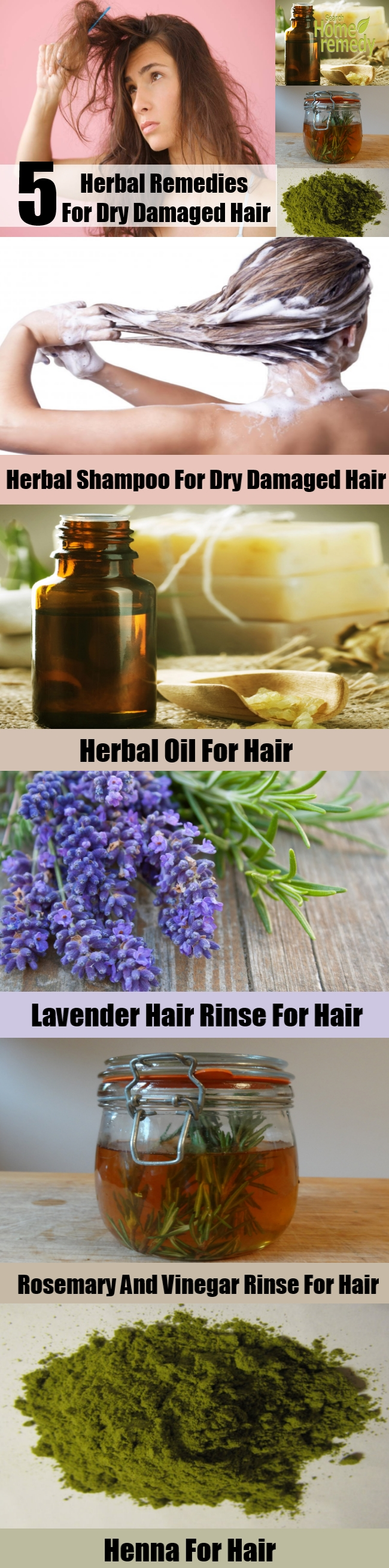 Five Herbal Remedies For Dry Damaged Hair