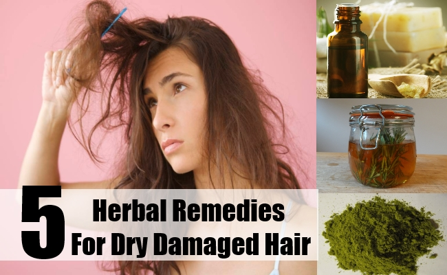 Herbal Remedies For Dry Damaged Hair