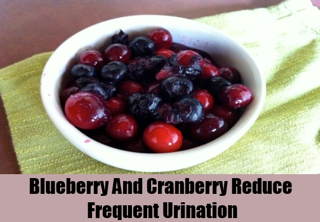 Blueberry And Cranberry Reduce Frequent Urination
