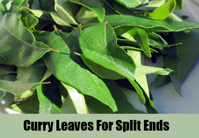 Curry Leaves For Split Ends
