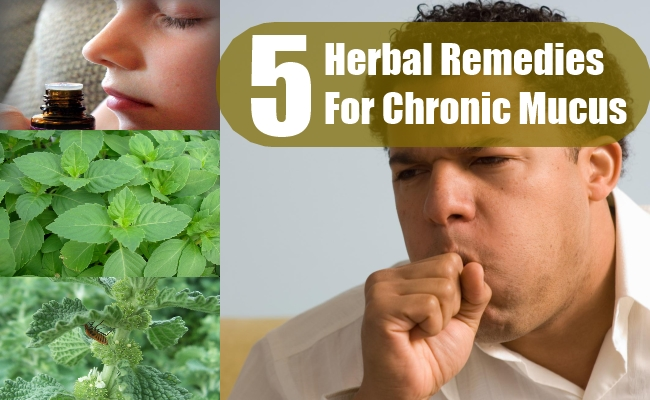 Herbal Remedies For Chronic Mucus