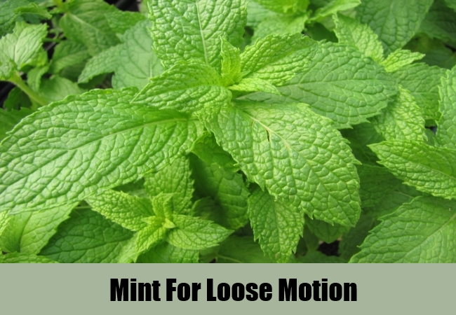 Mint For Loose Motion