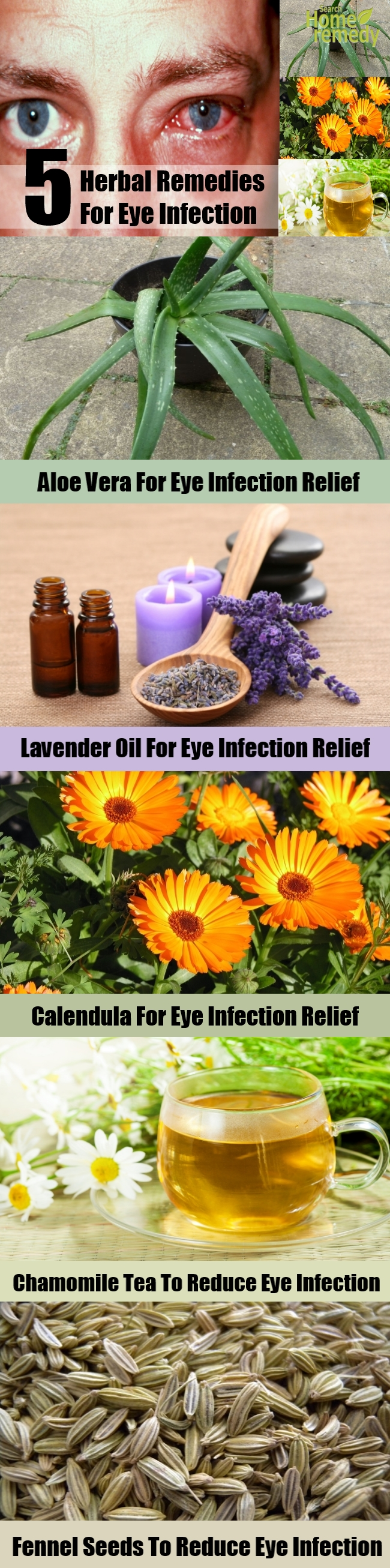 Top 5 Herbal Remedies For Eye Infection