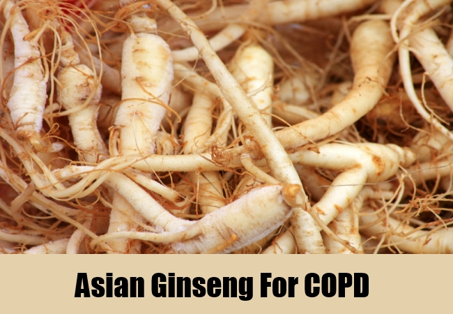 Asian Ginseng For Copd