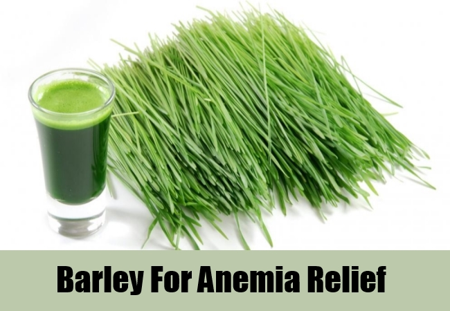 Barley For Anemia Relief