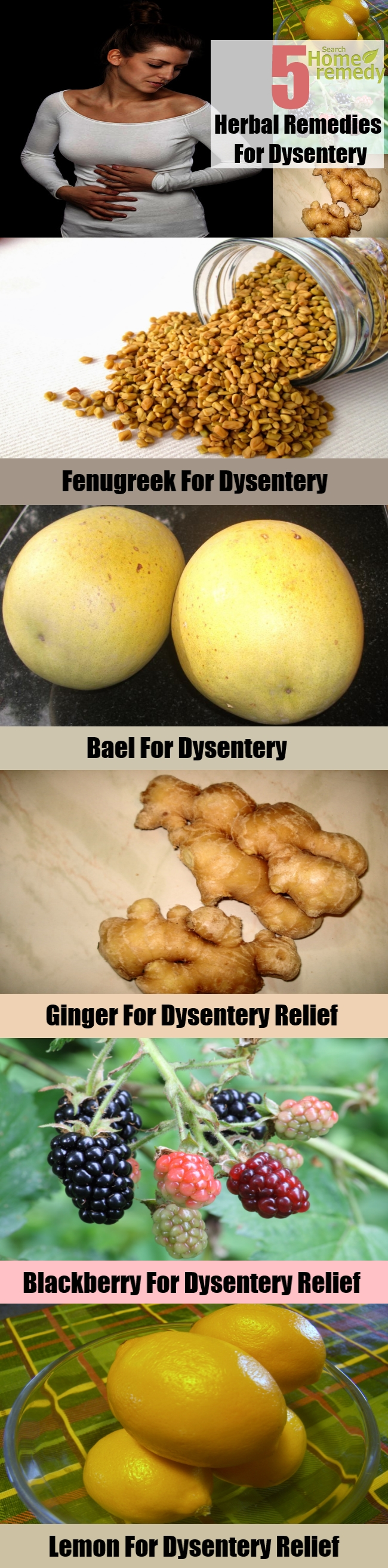 Best 5 Herbal Remedies For Dysentery