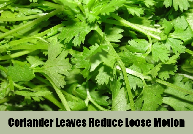 Coriander Leaves Reduce Loose Motion