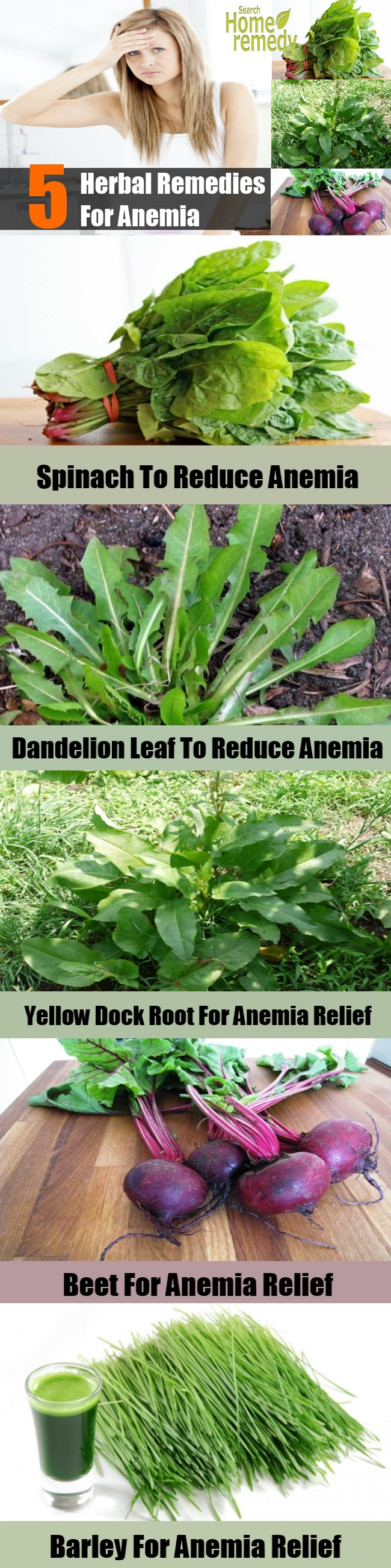 Top 5 Herbal Remedies For Anemia