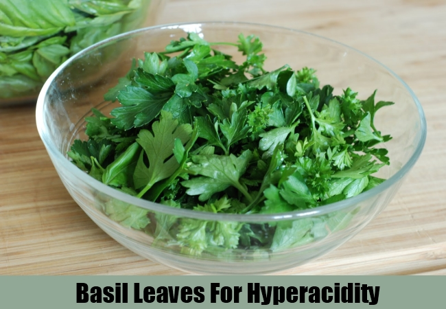Basil Leaves For Hyperacidity