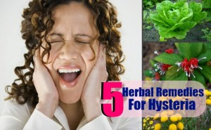 Herbal Remedies For Hysteria