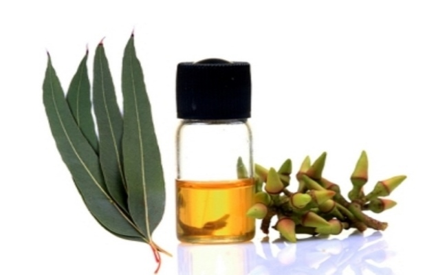 Inhale Strong Eucalyptus Oil