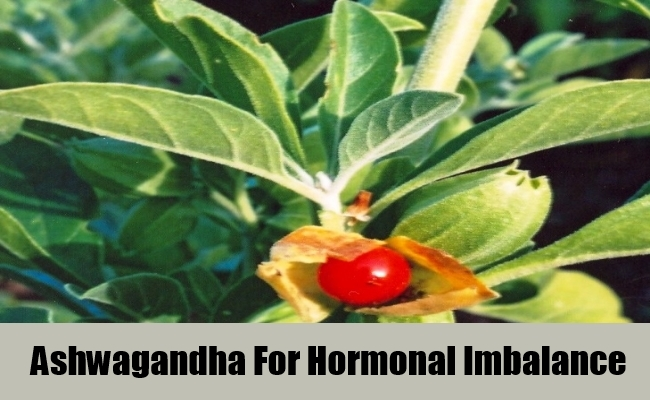 Ashwagandha For Hormonal Imbalance