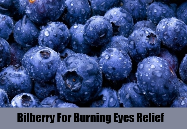 Bilberry For Burning Eyes Relief