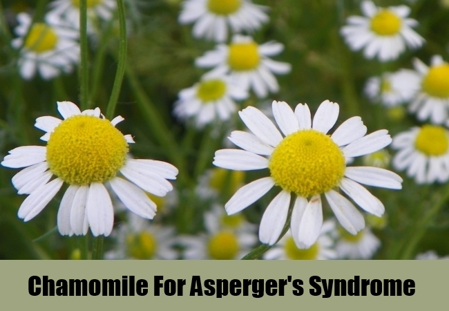 Chamomile For Asperger's Syndrome